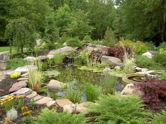 Landscaping gallery for Landscaping around ponds